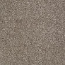 Shaw Floors Shaw Flooring Gallery Lucky You Ashen 00704_5574G