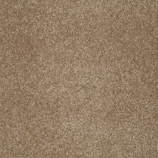 Shaw Floors Shaw Flooring Gallery Lucky You Bridgewater Tan 00709_5574G