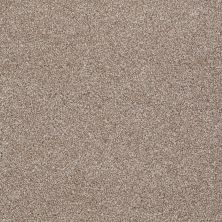 Shaw Floors Shaw Flooring Gallery Lucky You Sombrero 00710_5574G