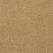 Shaw Contract No Collection Design Sr V 30 Linen 32243_5A032