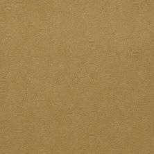 Shaw Contract No Collection Design Sr V 36 Linen 32243_5A033