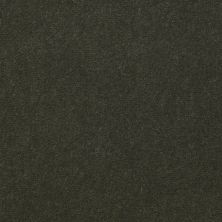 Shaw Contract No Collection Design Sr V 36 Foliage 32314_5A033