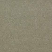 Shaw Contract No Collection Design Sr V 36 Exotic Seasalt 32322_5A033