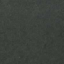 Shaw Contract No Collection Design Sr V 36 Envy 32340_5A033