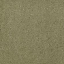 Shaw Contract No Collection Design Sr V 36 Fennel 32370_5A033