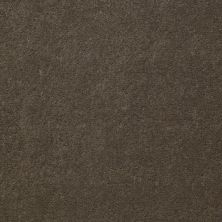 Shaw Contract No Collection Design Sr V 36 Latte 32705_5A033
