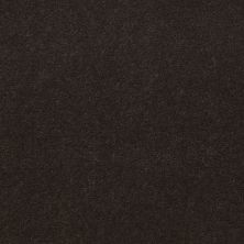 Shaw Contract No Collection Design Sr V 36 Wenge 32710_5A033
