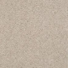 Shaw Floors Shaw Design Center Lacona 15′ Cashmere 55103_5C162