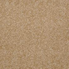 Shaw Floors Shaw Design Center Rose Creek Soft Gold 00250_5C324