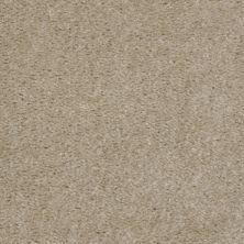 Shaw Floors Shaw Design Center Inspirational Zamara Sand 00109_5C329