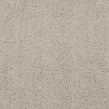 Shaw Floors Shaw Design Center Inspirational Coastal Sand 00122_5C329
