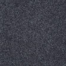 Shaw Floors Shaw Design Center Different Times II 15 Denim 00401_5C495