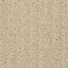 Shaw Floors Shaw Design Center Towne Crest Linen 00101_5C552
