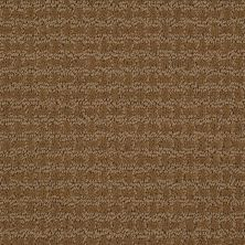 Shaw Floors Shaw Design Center Towne Crest Fresh Khaki 00700_5C552