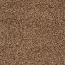 Shaw Floors Shaw Design Center Winters Home Shiitake 00108_5C582