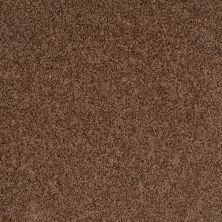Shaw Floors Shaw Design Center Winters Home Pine Bark 00702_5C582