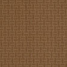 Shaw Floors Shaw Design Center Big Charm Dark Khaki 00702_5C585