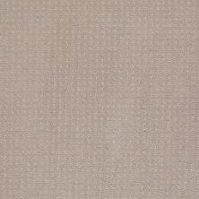 Shaw Floors Shaw Design Center Warm Welcome Grey Dove 00500_5C587