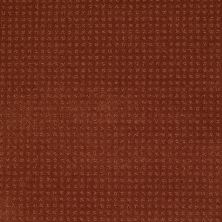 Shaw Floors Shaw Design Center Warm Welcome Aged Copper 00600_5C587