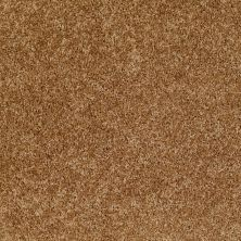 Shaw Floors Shaw Design Center Edgemore Deep Ochre 00200_5C598