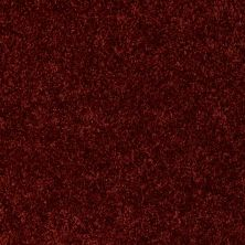 Shaw Floors Shaw Design Center Edgemore Tucson Red 00800_5C598