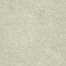 Shaw Floors Shaw Design Center Larimore 15′ Morning Light 00102_5C607