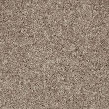 Shaw Floors Shaw Design Center Larimore 15′ River Slate 00720_5C607