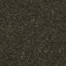Shaw Floors Shaw Design Center Royal Portrush II 12′ Garden Grove 00301_5C612
