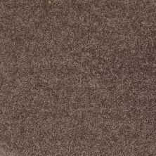 Shaw Floors Shaw Design Center Royal Portrush II 12′ Molasses 00710_5C612