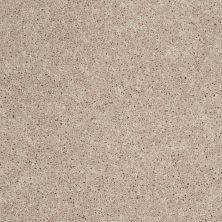 Shaw Floors Shaw Design Center Royal Portrush III 12′ Flax Seed 00103_5C613