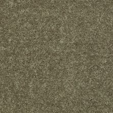 Shaw Floors Shaw Design Center Royal Portrush III 12′ Aloe 00300_5C613