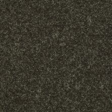 Shaw Floors Shaw Design Center Royal Portrush III 12′ Garden Grove 00301_5C613