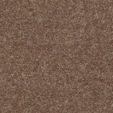 Shaw Floors Shaw Design Center Royal Portrush III 12′ Granola 00701_5C613
