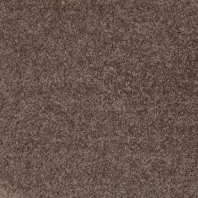 Shaw Floors Shaw Design Center Royal Portrush III 12′ Molasses 00710_5C613