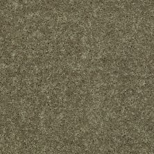 Shaw Floors Shaw Design Center Royal Portrush III 15′ Aloe 00300_5C614