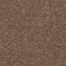Shaw Floors Shaw Design Center Royal Portrush III 15′ Granola 00701_5C614