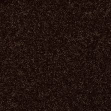Shaw Floors Shaw Design Center Royal Portrush III 15′ Coffee Bean 00705_5C614