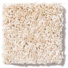Shaw Floors Shaw Design Center Kentland 15′ Rice Paper 00110_5C624