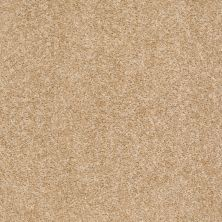 Shaw Floors Shaw Design Center Wild Pitch Cornsilk 00101_5C633