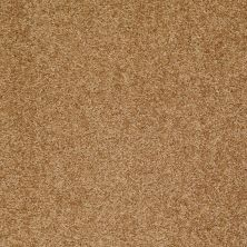 Shaw Floors Shaw Design Center Wild Pitch Deep Ochre 00200_5C633