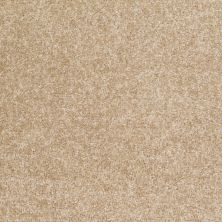 Shaw Floors Shaw Design Center Wild Pitch Luminary 00201_5C633