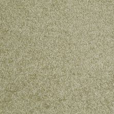 Shaw Floors Shaw Design Center Wild Pitch Kiwi 00300_5C633