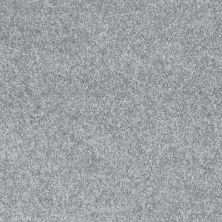 Shaw Floors Shaw Design Center Wild Pitch Silhouette 00500_5C633