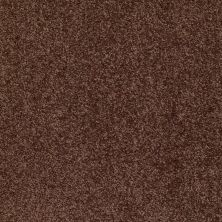 Shaw Floors Shaw Design Center Wild Pitch Urban Legend 00714_5C633