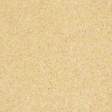 Shaw Floors Shaw Design Center Kid Crazy Lemon Drop 00230_5C654