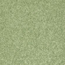 Shaw Floors Shaw Design Center Kid Crazy Limeade 00330_5C654