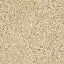 Shaw Floors Shaw Design Center Luxury Bay II Chamois 00220_5C670