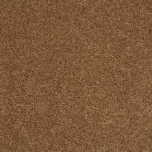Shaw Floors Shaw Design Center Luxury Bay II English Toffee 00703_5C670