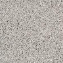 Shaw Floors Shaw Design Center Luxury Bay III Sheer Silver 00500_5C671
