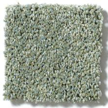 Shaw Floors Shaw Design Center Renaissance Texture Surf 00401_5C678